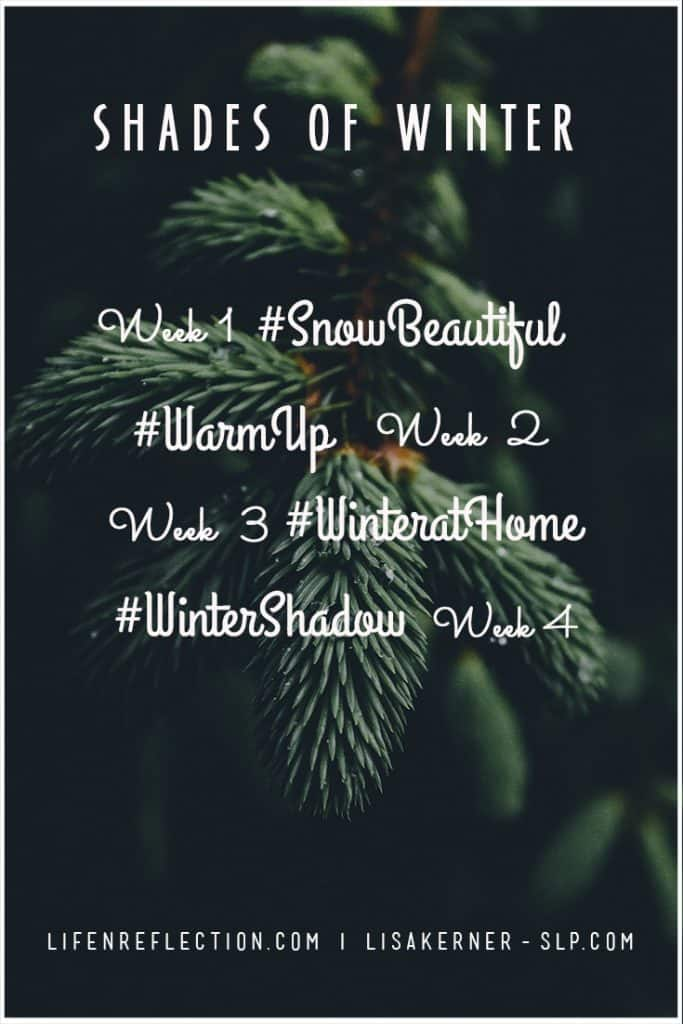 Shades of Winter weekly prompts