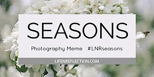 LNRseasons photography meme
