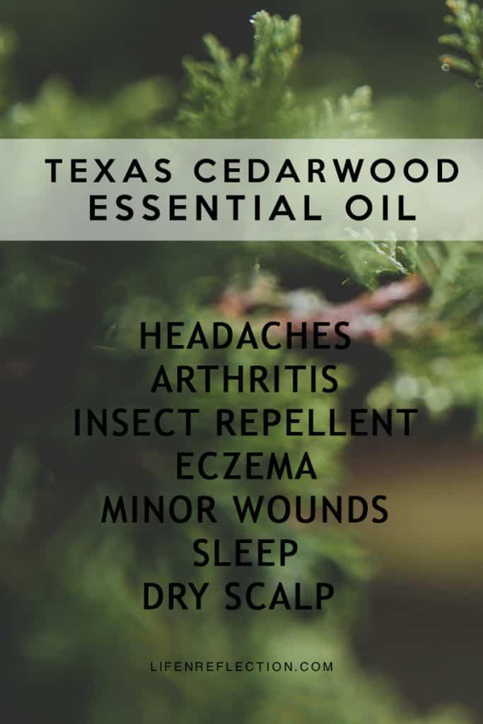 Texas Cedarwood Hand Lotion