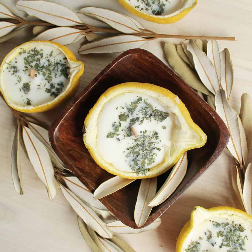 Citronella Lemon Bowl Candles