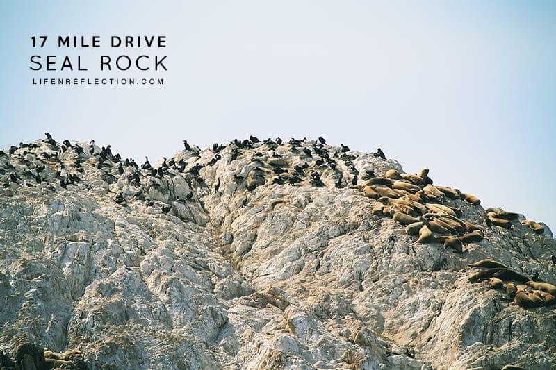 Seal Rock on 17 Mile Drive