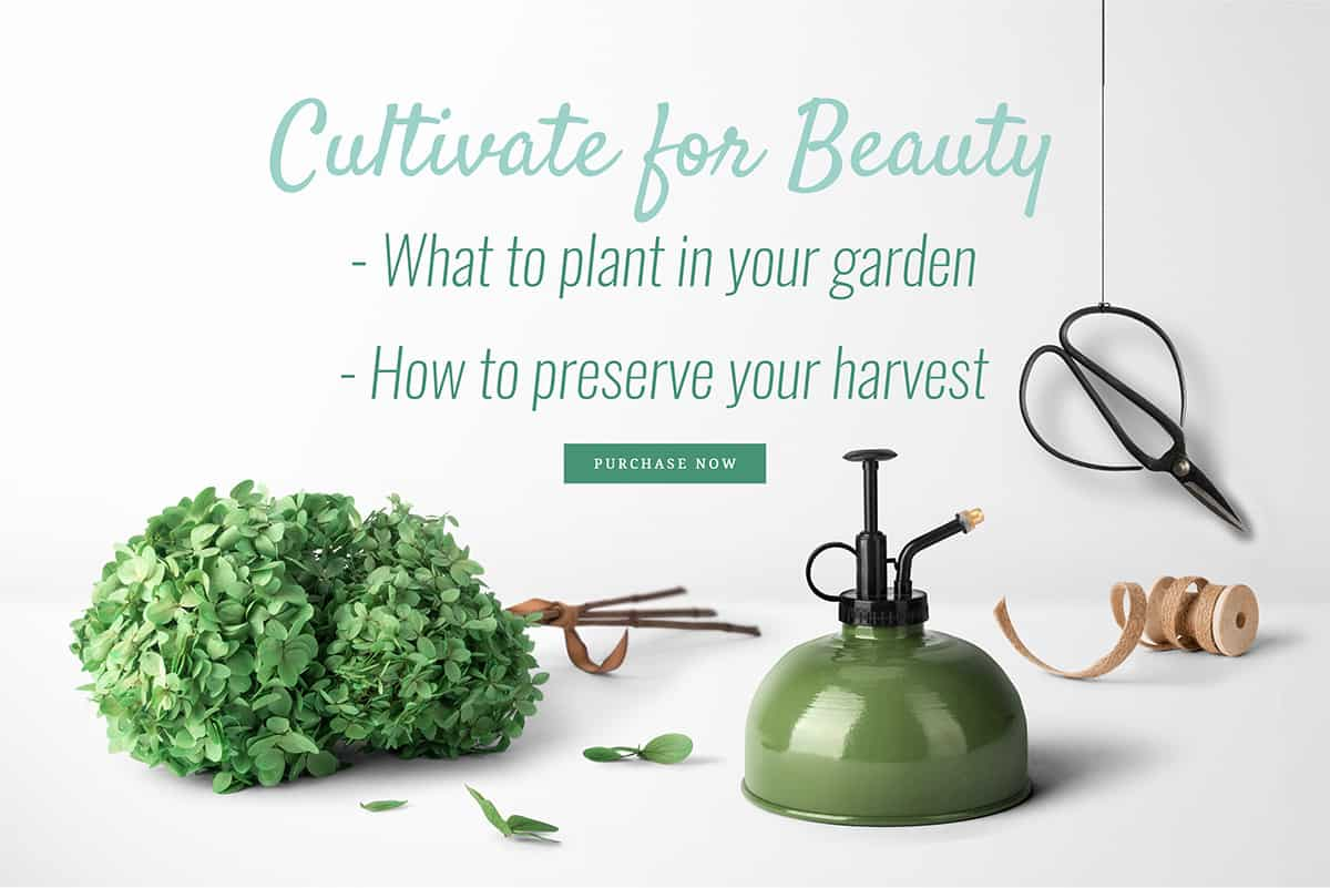 Each beauty recipe in this book is made with all natural ingredients and infused with fresh and dried staples from the garden