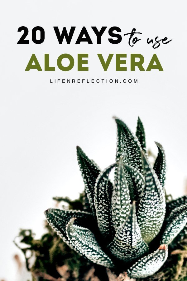 Aloe vera uses can encompass just about every part of our body, from head to toe! Including benefits of aloe for hair and skin alike. Here's 20 ways to put this beauty plant to use!