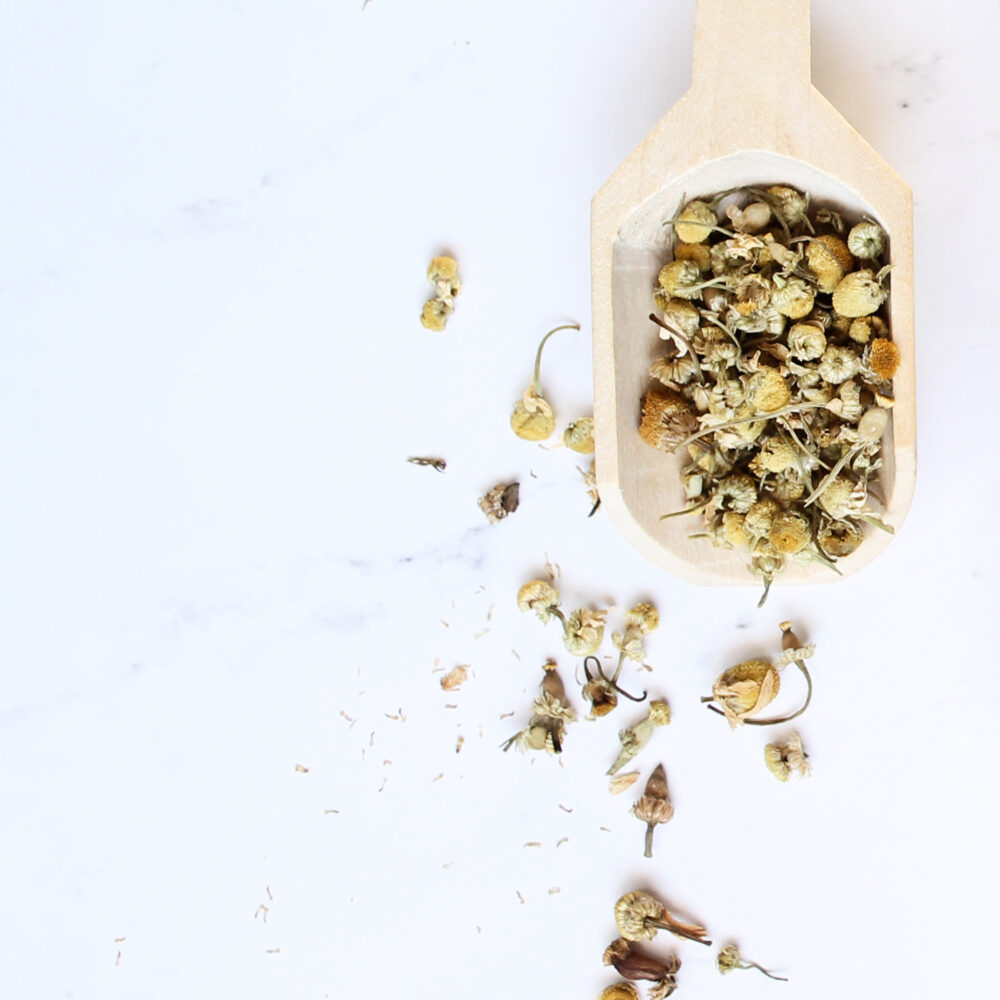 Scoop of dried chamomile