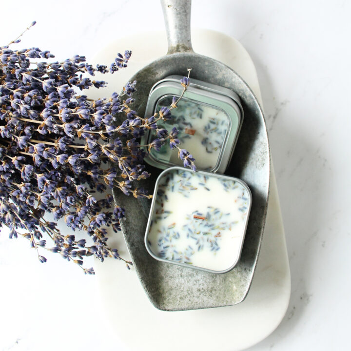 Because dried lavender doesn't travel well, I found a way to take that feeling and scent with me in a hand-poured lavender travel candle!